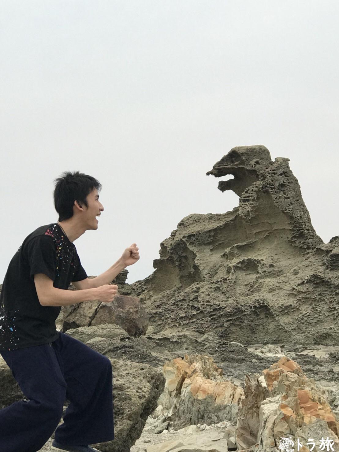 【秋田】ゴジラとバトル⁉︎B級グルメから郷土料理まで食べ尽くす!
