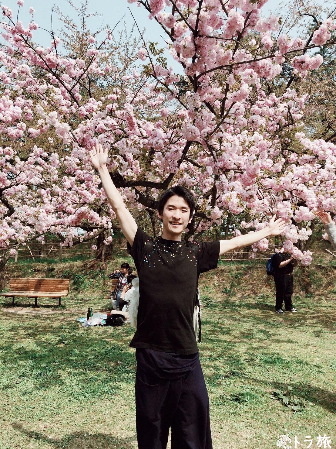 【青森】4月下旬でもまだ花見ができる弘前の桜祭り!
