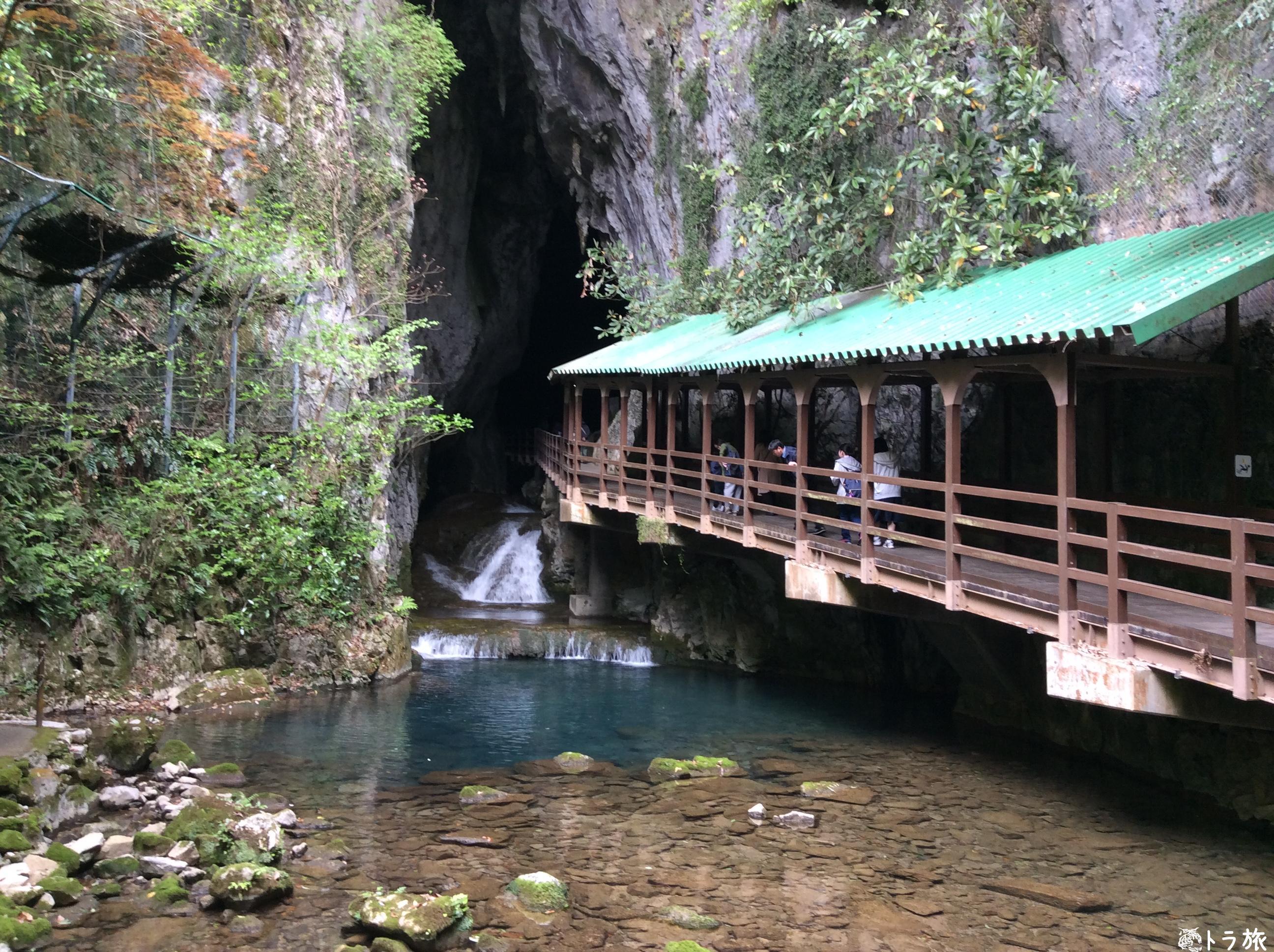 【山口県】日本三大鍾乳洞の秋芳洞には富士山がある⁉︎